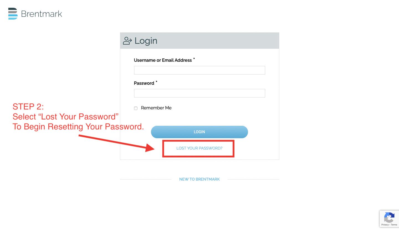 Lost Password Step 2
